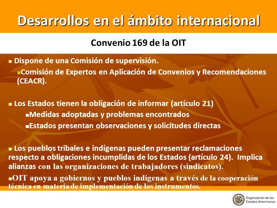 Desarrollos en el ámbito internacional Dispone de una Comisión de supervisión. Comisión de Expertos en Aplicación de Convenios y Recomendaciones (CEAC