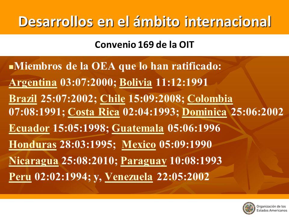 Desarrollos en el ámbito internacional Miembros de la OEA que lo han ratificado: ArgentinaArgentina 03:07:2000; Bolivia 11:12:1991Bolivia BrazilBrazil