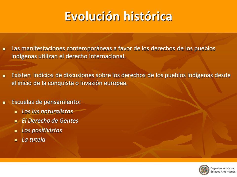 Evolución histórica Las manifestaciones contemporáneas a favor de los derechos de los pueblos indígenas utilizan el derecho internacional. Las manifes