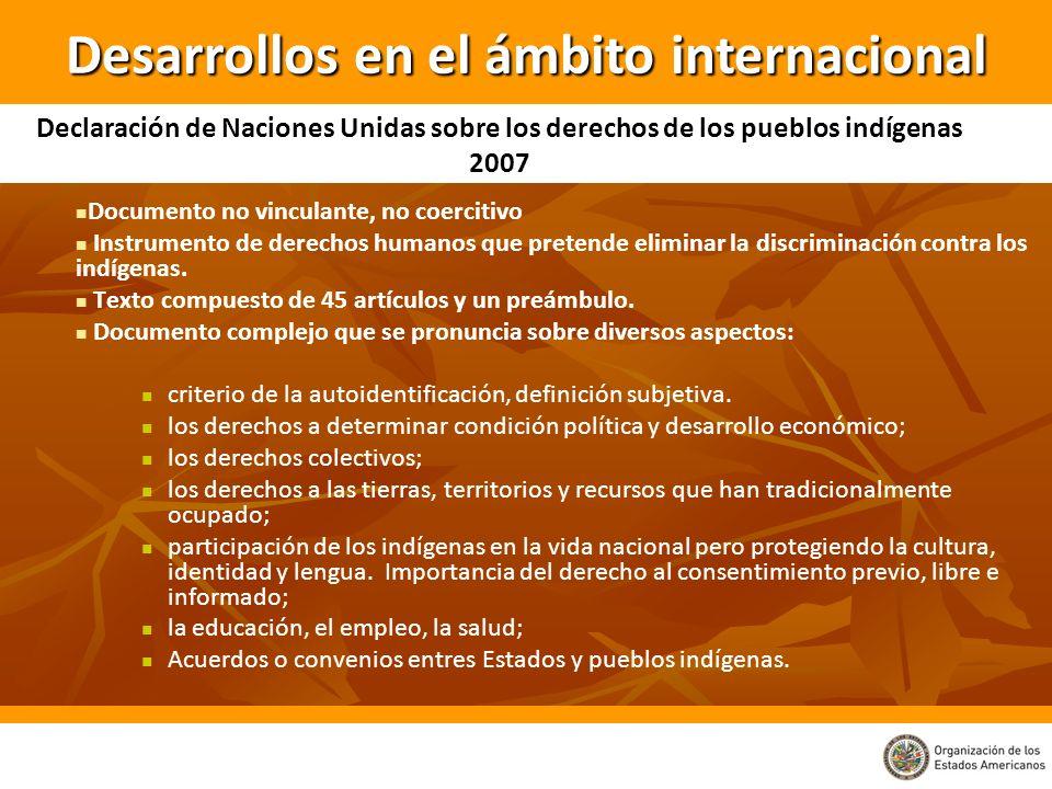 Documento no vinculante, no coercitivo Instrumento de derechos humanos que pretende eliminar la discriminación contra los indígenas. Texto compuesto d