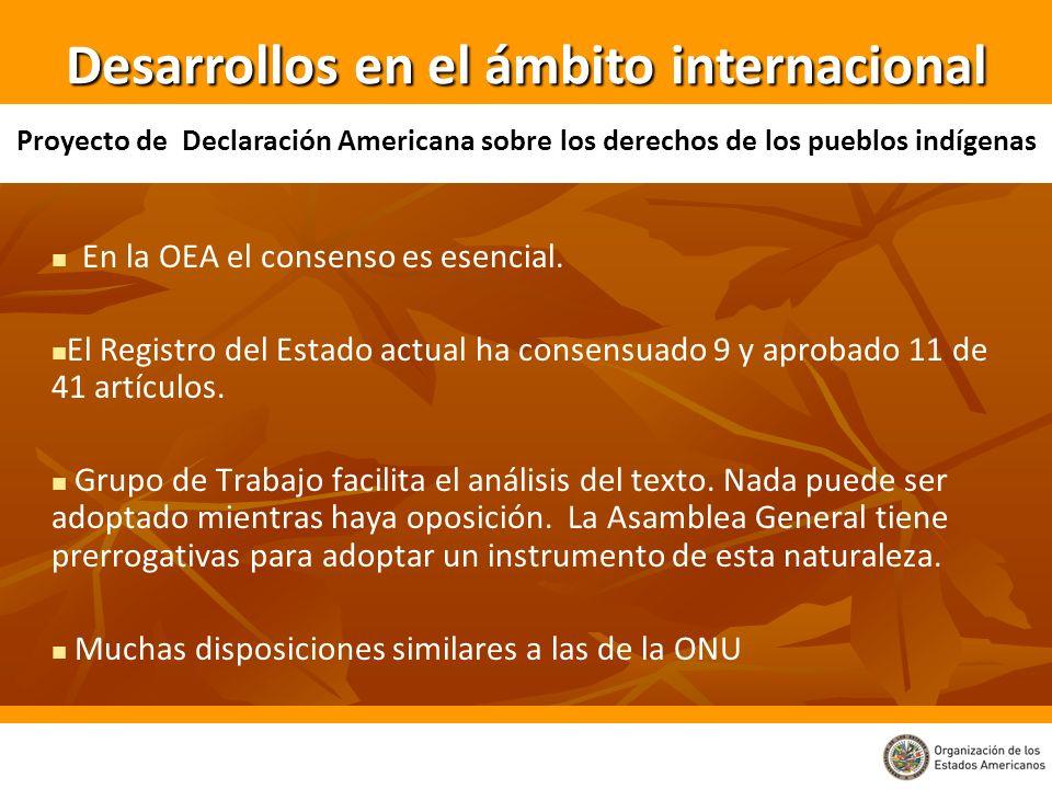 En la OEA el consenso es esencial. El Registro del Estado actual ha consensuado 9 y aprobado 11 de 41 artículos. Grupo de Trabajo facilita el análisis