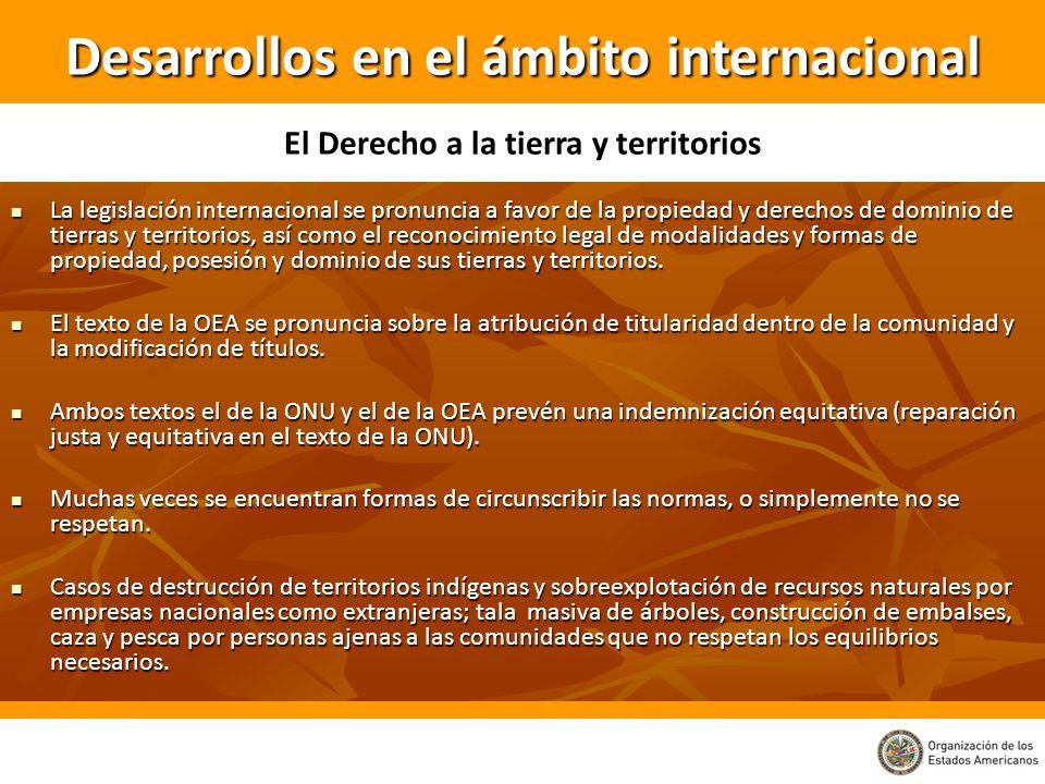 La legislación internacional se pronuncia a favor de la propiedad y derechos de dominio de tierras y territorios, así como el reconocimiento legal de