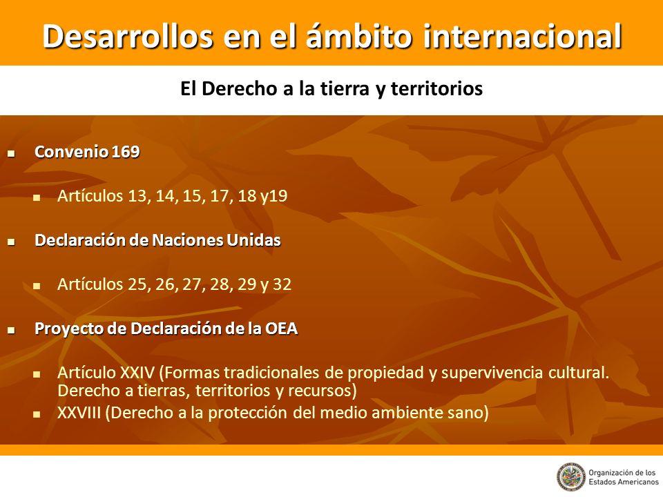 Convenio 169 Convenio 169 Artículos 13, 14, 15, 17, 18 y19 Declaración de Naciones Unidas Declaración de Naciones Unidas Artículos 25, 26, 27, 28, 29