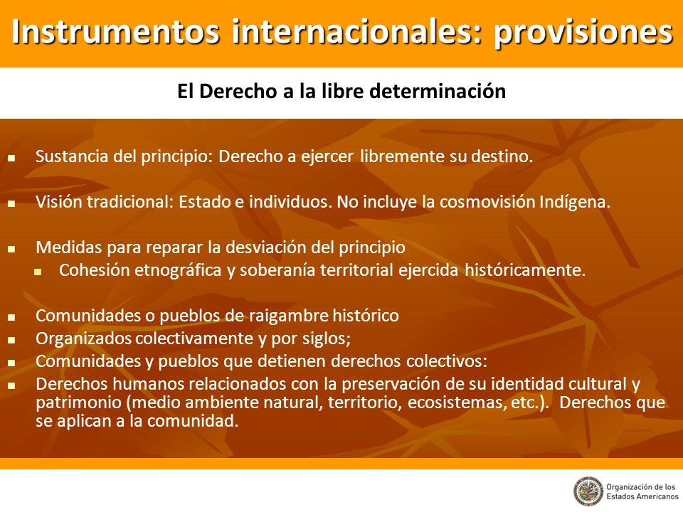 Instrumentos internacionales: provisiones Sustancia del principio: Derecho a ejercer libremente su destino. Visión tradicional: Estado e individuos. N