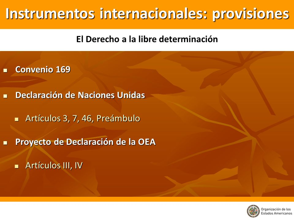 Convenio 169 Convenio 169 Declaración de Naciones Unidas Declaración de Naciones Unidas Artículos 3, 7, 46, Preámbulo Artículos 3, 7, 46, Preámbulo Pr