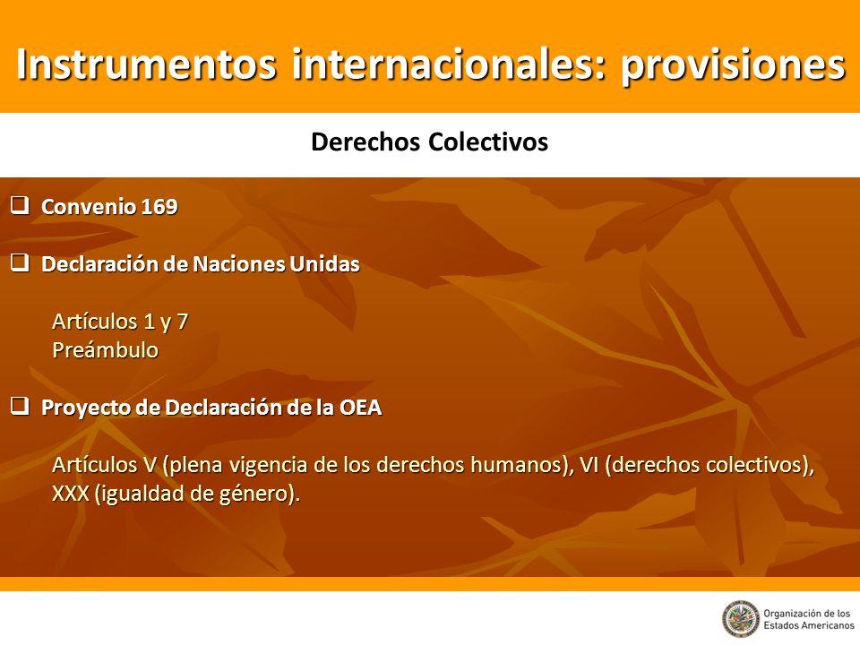 Instrumentos internacionales: provisiones Convenio 169 Convenio 169 Declaración de Naciones Unidas Declaración de Naciones Unidas Artículos 1 y 7 Preá