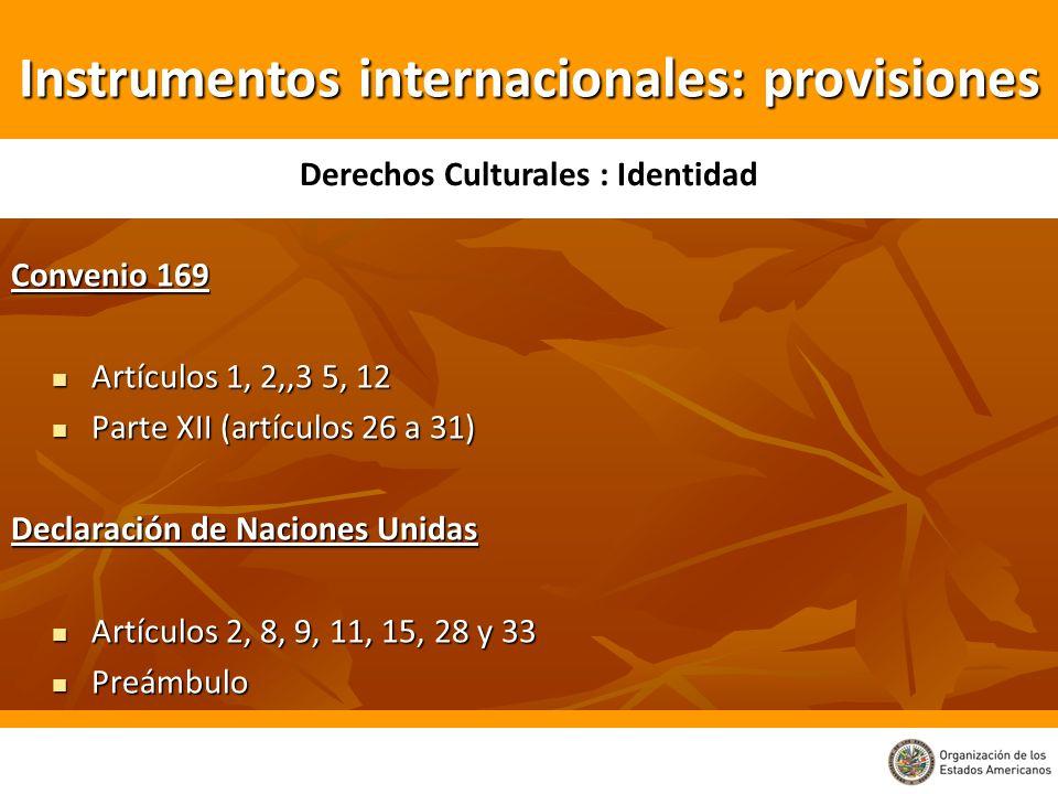 Convenio 169 Artículos 1, 2,,3 5, 12 Artículos 1, 2,,3 5, 12 Parte XII (artículos 26 a 31) Parte XII (artículos 26 a 31) Declaración de Naciones Unida