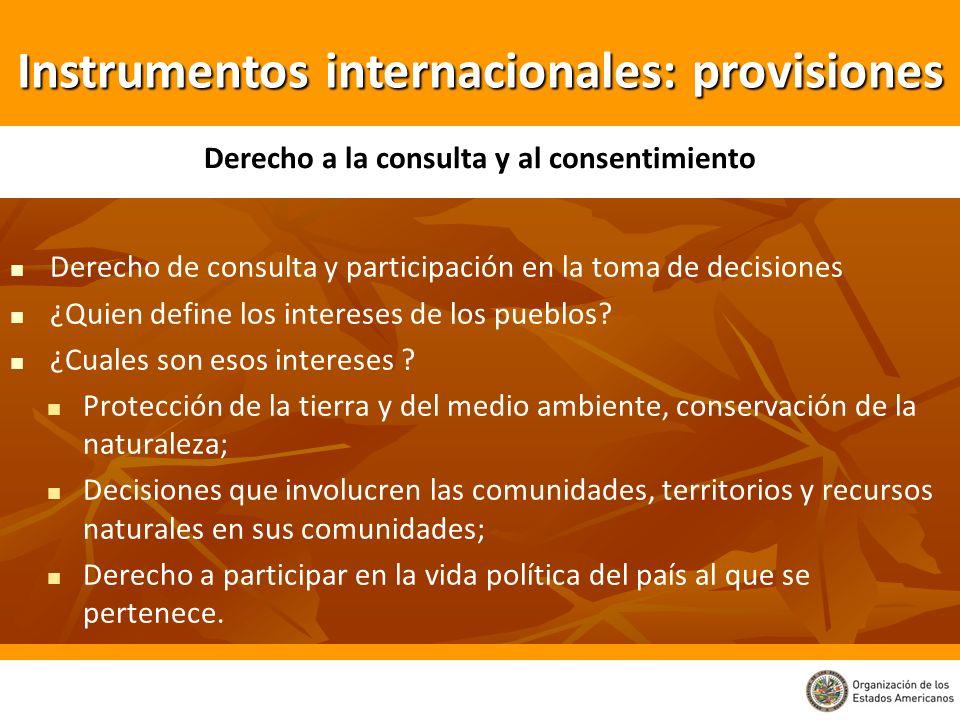 Derecho de consulta y participación en la toma de decisiones ¿Quien define los intereses de los pueblos? ¿Cuales son esos intereses ? Protección de la