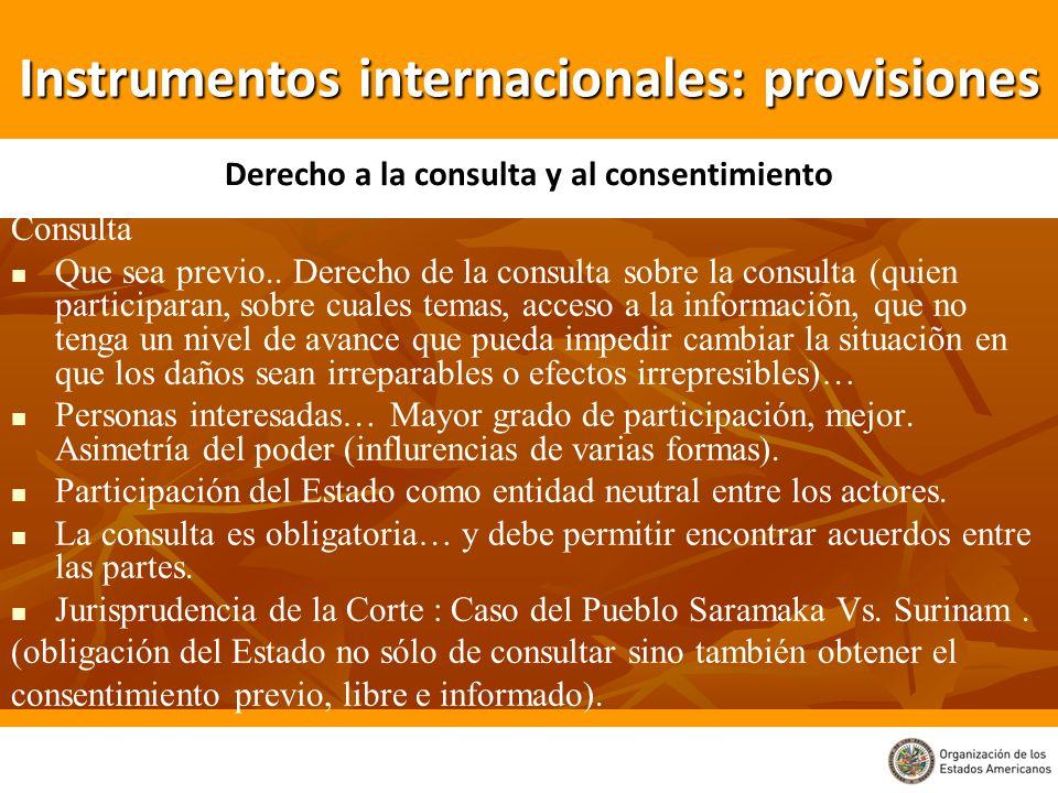 Consulta Que sea previo.. Derecho de la consulta sobre la consulta (quien participaran, sobre cuales temas, acceso a la informaciõn, que no tenga un n