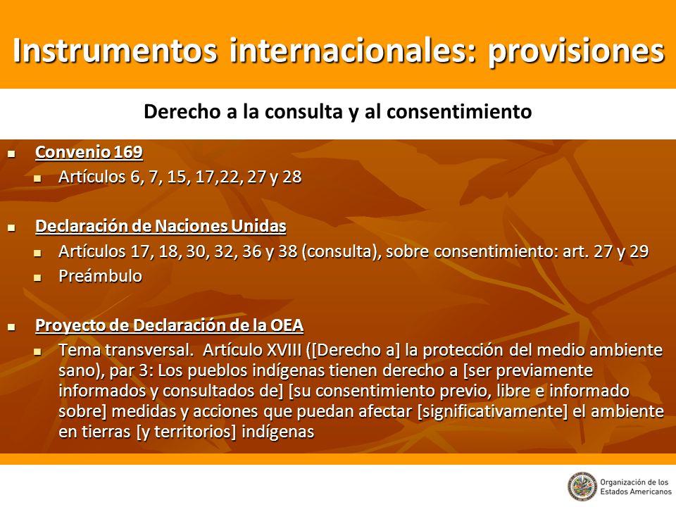 Convenio 169 Convenio 169 Artículos 6, 7, 15, 17,22, 27 y 28 Artículos 6, 7, 15, 17,22, 27 y 28 Declaración de Naciones Unidas Declaración de Naciones