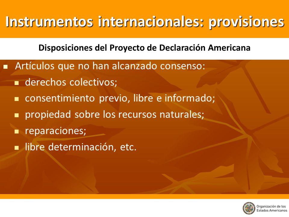Artículos que no han alcanzado consenso: derechos colectivos; consentimiento previo, libre e informado; propiedad sobre los recursos naturales; repara