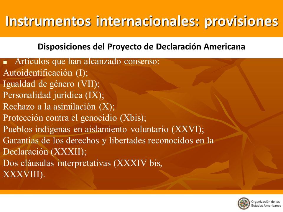 Artículos que han alcanzado consenso: Autoidentificación (I); Igualdad de género (VII); Personalidad jurídica (IX); Rechazo a la asimilación (X); Prot