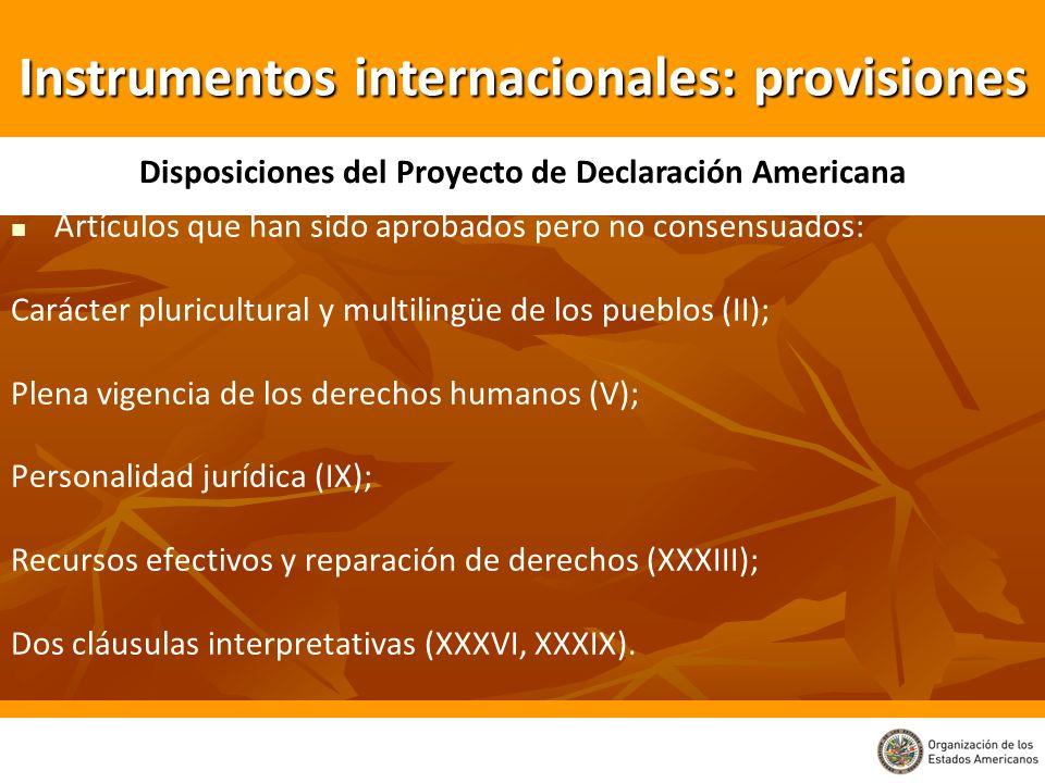 Artículos que han sido aprobados pero no consensuados: Carácter pluricultural y multilingüe de los pueblos (II); Plena vigencia de los derechos humano