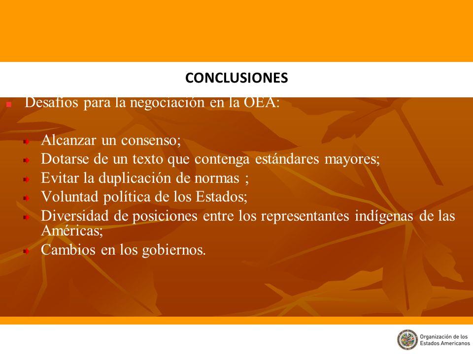 Desafíos para la negociación en la OEA: Alcanzar un consenso; Dotarse de un texto que contenga estándares mayores; Evitar la duplicación de normas ; V