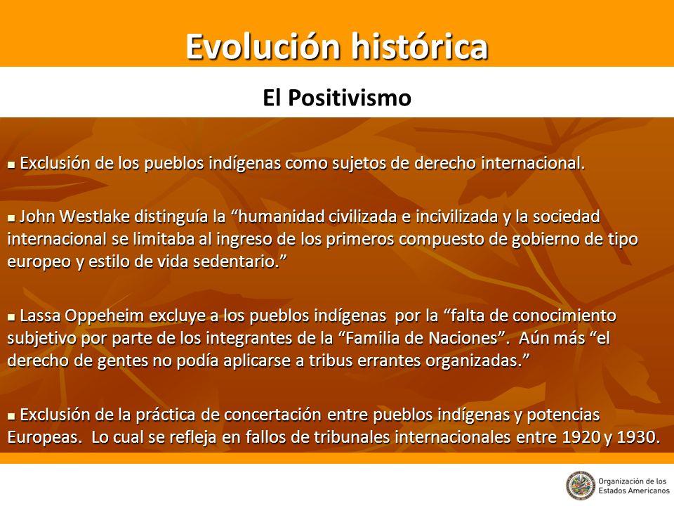 Al interior de los Estados se reconoce El derecho a la libre determinación de los pueblos indígenas, en virtud del cual pueden definir sus formas de organización y promover su Desarrollo económico, social y cultural Artículo III del texto de la OEA Los pueblos indígenas tienen derecho a la libre determinación.