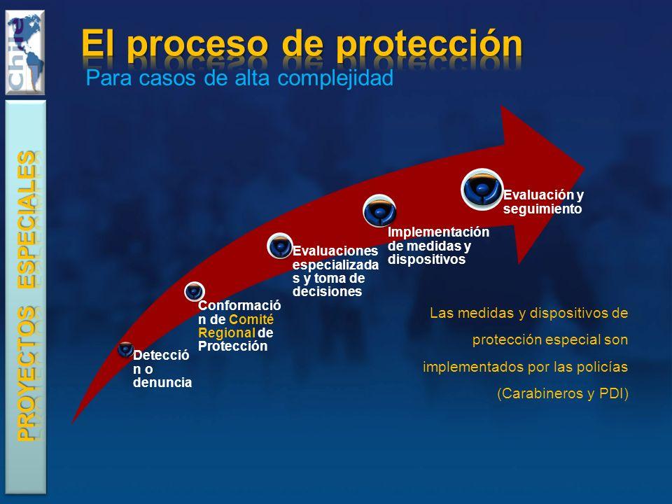 Las medidas y dispositivos de protección especial son implementados por las policías (Carabineros y PDI) Para casos de alta complejidad
