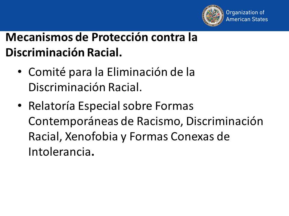 Mecanismos de Protección contra la Discriminación Racial. Comité para la Eliminación de la Discriminación Racial. Relatoría Especial sobre Formas Cont