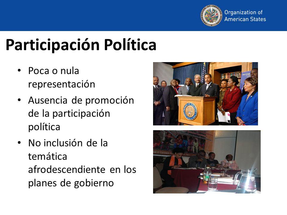 Participación Política Poca o nula representación Ausencia de promoción de la participación política No inclusión de la temática afrodescendiente en l