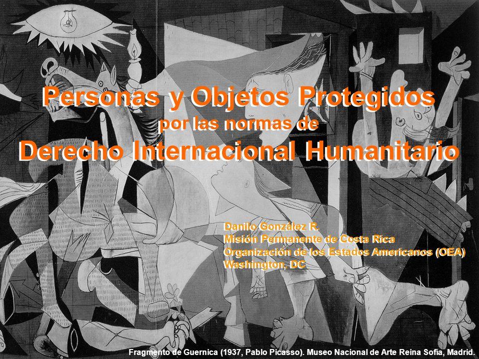 Curso Introductorio sobre DIH Organización de los Estados Americanos (OEA) Salón Padilha Vidal Washington, DC 31 de Enero de 2007 Diapositiva N° 1 Per