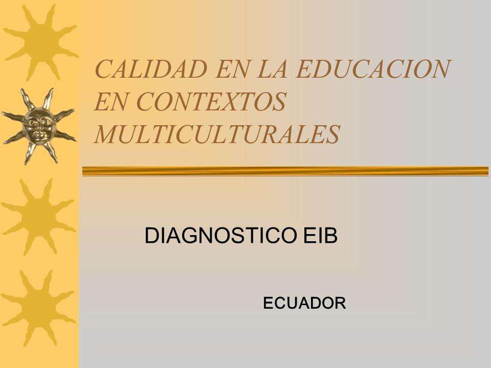 CALIDAD EN LA EDUCACION EN CONTEXTOS MULTICULTURALES DIAGNOSTICO EIB ECUADOR