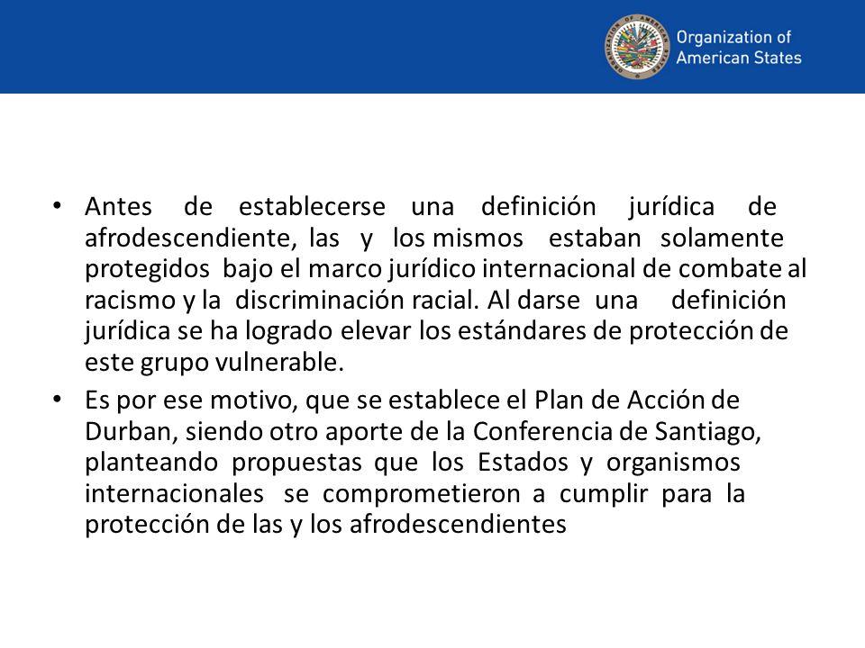 Antes de establecerse una definición jurídica de afrodescendiente, las y los mismos estaban solamente protegidos bajo el marco jurídico internacional de combate al racismo y la discriminación racial.