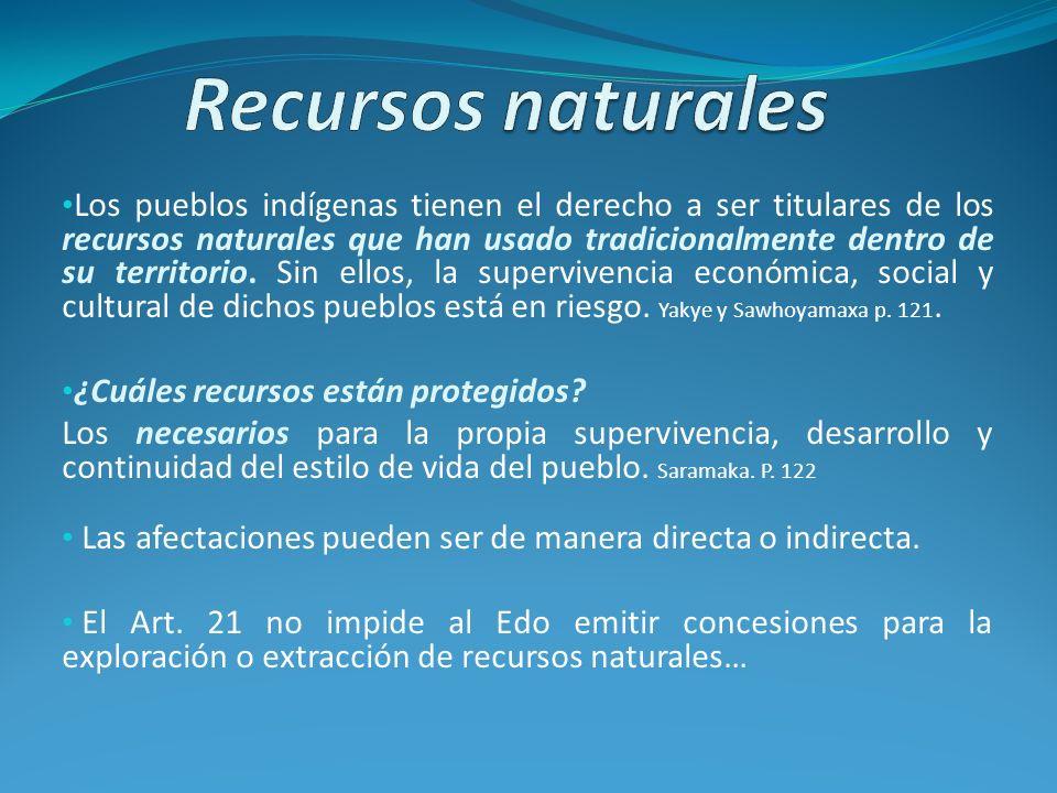 Los pueblos indígenas tienen el derecho a ser titulares de los recursos naturales que han usado tradicionalmente dentro de su territorio. Sin ellos, l