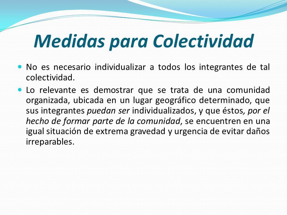 Medidas para Colectividad No es necesario individualizar a todos los integrantes de tal colectividad. Lo relevante es demostrar que se trata de una co