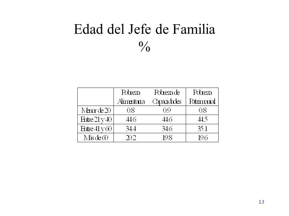 13 Edad del Jefe de Familia %