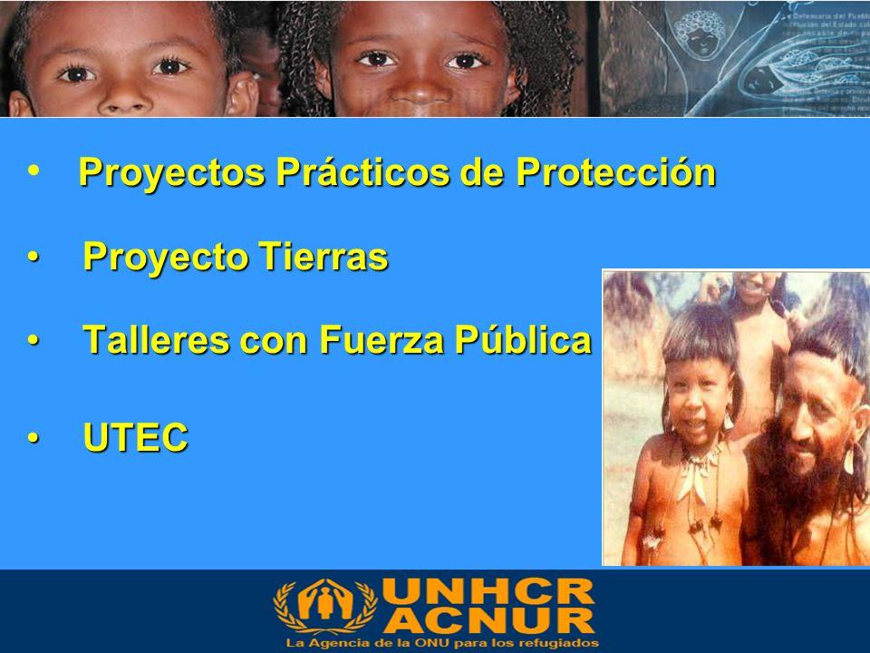Proyectos Prácticos de Protección Proyecto Tierras Proyecto Tierras Talleres con Fuerza Pública Talleres con Fuerza Pública UTEC UTEC