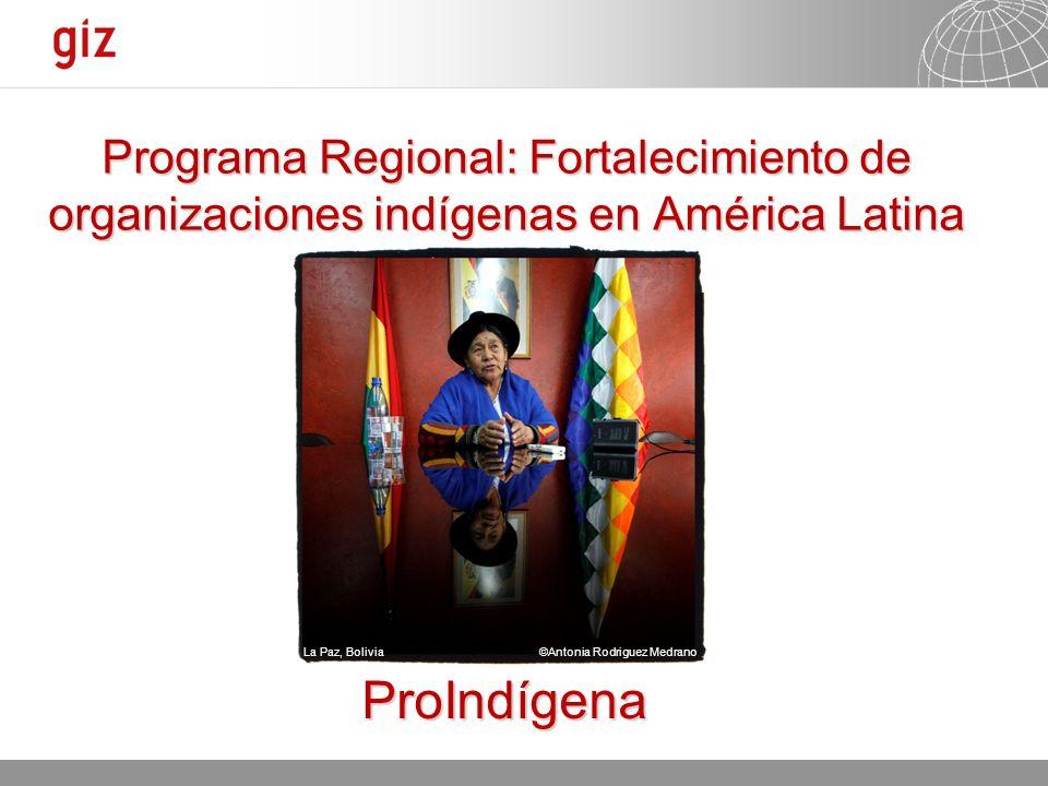 11.01.2014 Seite 1 Programa Regional: Fortalecimiento de organizaciones indígenas en América Latina ProIndígena La Paz, Bolivia ©Antonia Rodriguez Med