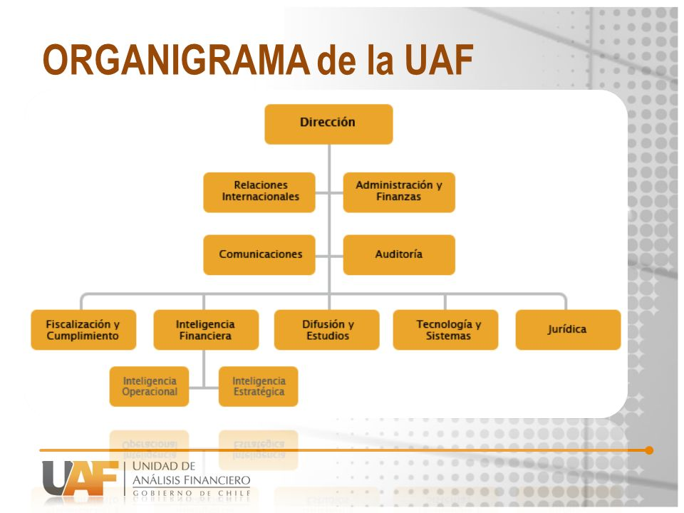 ORGANIGRAMA de la UAF
