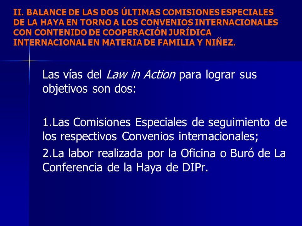 Las vías del Law in Action para lograr sus objetivos son dos: 1. 1.Las Comisiones Especiales de seguimiento de los respectivos Convenios internacional