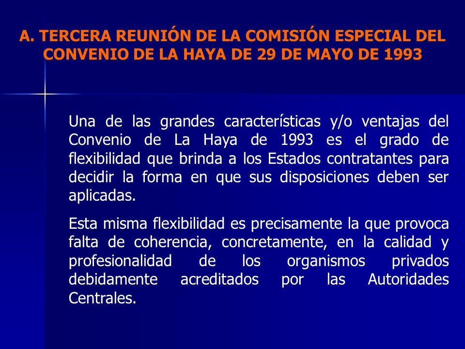 Una de las grandes características y/o ventajas del Convenio de La Haya de 1993 es el grado de flexibilidad que brinda a los Estados contratantes para