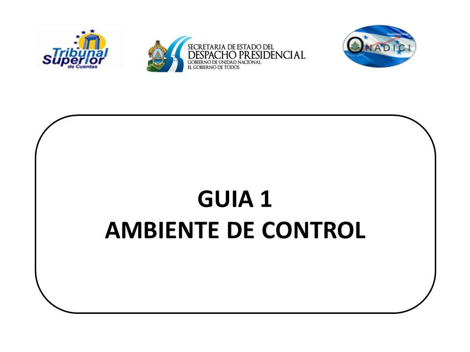 GUIA 1 AMBIENTE DE CONTROL