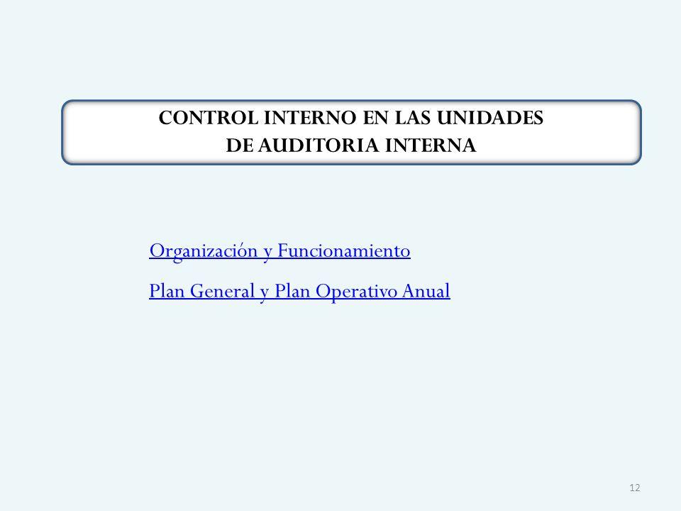 CONTROL INTERNO EN LAS UNIDADES DE AUDITORIA INTERNA Organización y Funcionamiento Plan General y Plan Operativo Anual 12