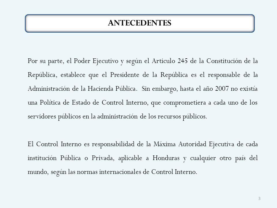 ANTECEDENTES Por su parte, el Poder Ejecutivo y según el Articulo 245 de la Constitución de la República, establece que el Presidente de la República