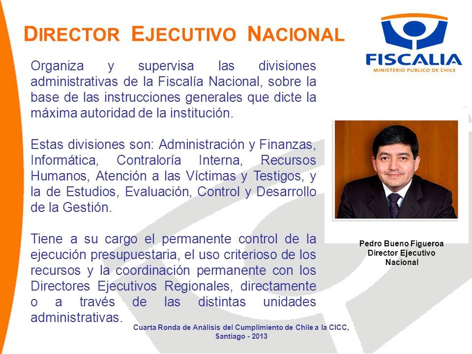 D IRECTOR E JECUTIVO N ACIONAL Organiza y supervisa las divisiones administrativas de la Fiscalía Nacional, sobre la base de las instrucciones generales que dicte la máxima autoridad de la institución.