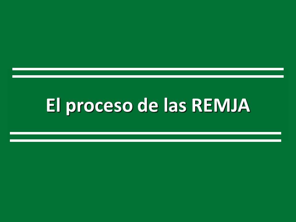 El proceso de las REMJA