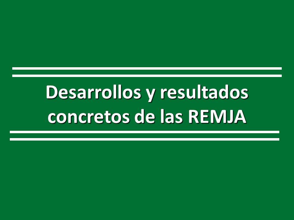 Desarrollos y resultados concretos de las REMJA
