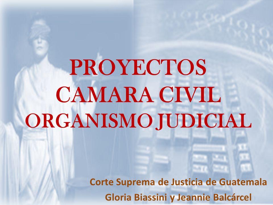 PROYECTOS CAMARA CIVIL ORGANISMO JUDICIAL Corte Suprema de Justicia de Guatemala Gloria Biassini y Jeannie Balcárcel