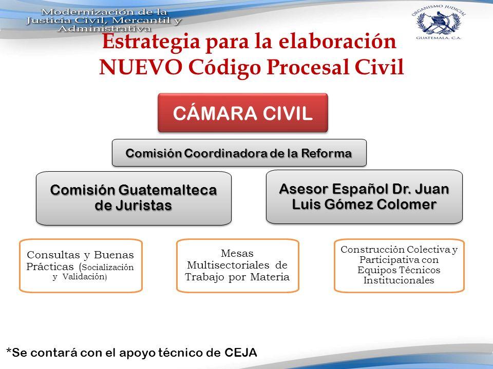 Reforma al Código procesal Civil Estrategia para la elaboración NUEVO Código Procesal Civil Comisión Guatemalteca de Juristas Consultas y Buenas Práct