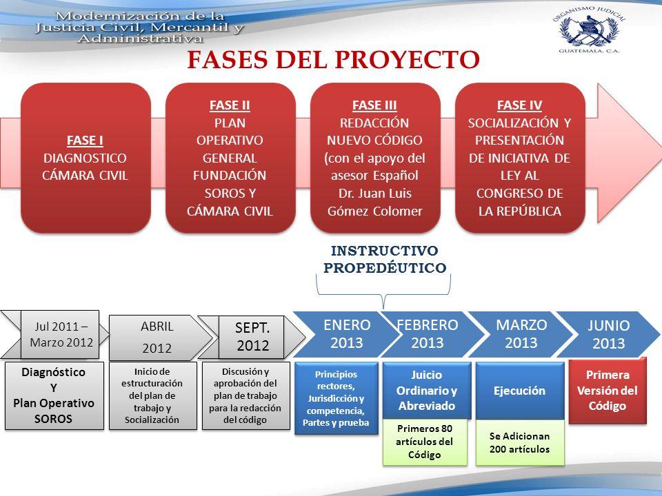 El nuevo código se basará en los siguientes criterios: 1.Oralidad 2.Simplificación procedimental 3.Cientificidad del proceso: construcción desde el punto de vista de las instituciones jurídicas.