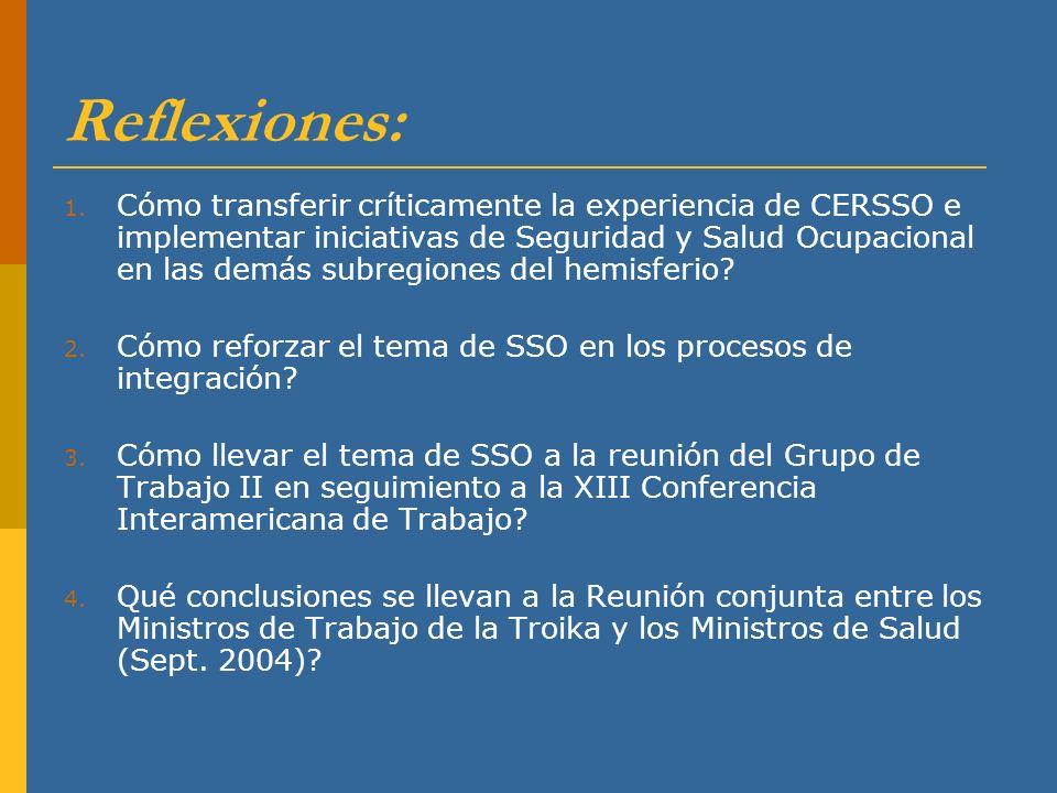 Reflexiones: 1. Cómo transferir críticamente la experiencia de CERSSO e implementar iniciativas de Seguridad y Salud Ocupacional en las demás subregio