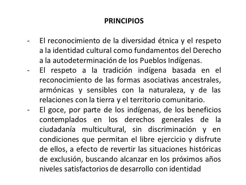 -El reconocimiento de la diversidad de los Pueblos Indígenas –rurales y, de manera creciente, urbanos- como un valor social que debe ser considerado elemento esencial del desarrollo ante los nuevos riesgos y desafíos de los procesos de globalización.