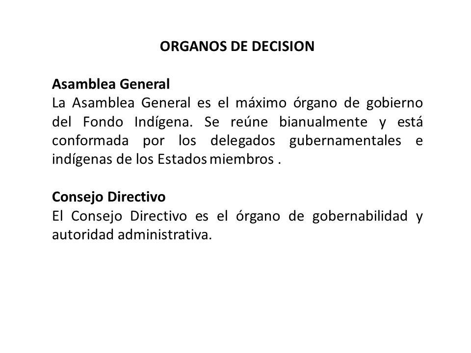 Comité Ejecutivo Compuesto por un Presidente, un Primer Vicepresidente indígena y un Segundo Vicepresidente gubernamental extraregional.