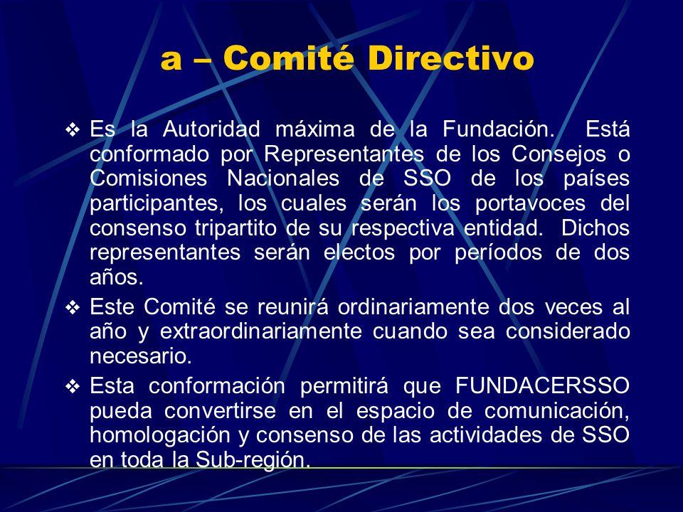 a – Comité Directivo Es la Autoridad máxima de la Fundación.