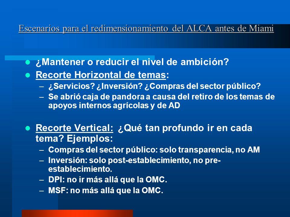 Escenarios para el redimensionamiento del ALCA antes de Miami ¿Mantener o reducir el nivel de ambición? Recorte Horizontal de temas: –¿Servicios? ¿Inv
