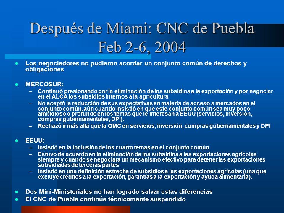Después de Miami: CNC de Puebla Feb 2-6, 2004 Los negociadores no pudieron acordar un conjunto común de derechos y obligaciones MERCOSUR: –Continuó pr