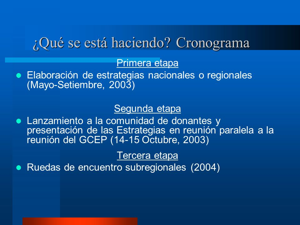 ¿Qué se está haciendo? Cronograma Primera etapa Elaboración de estrategias nacionales o regionales (Mayo-Setiembre, 2003) Segunda etapa Lanzamiento a