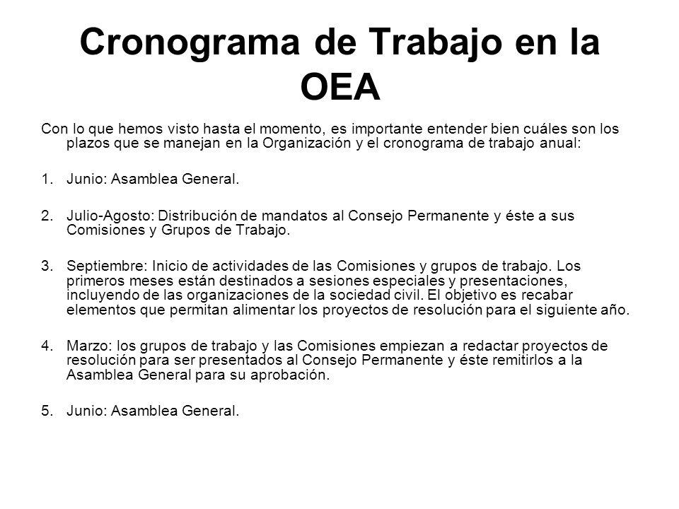 Cronograma de Trabajo en la OEA Con lo que hemos visto hasta el momento, es importante entender bien cuáles son los plazos que se manejan en la Organi